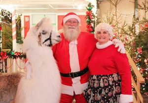 Santa Mrs Claus Cesar the Llama